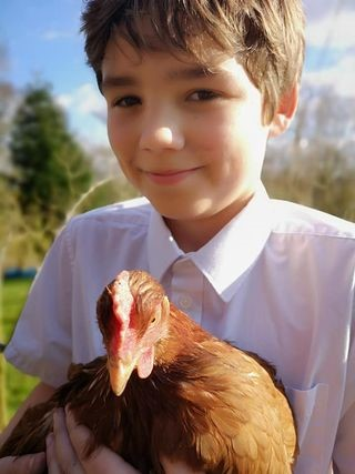 OS student and hen