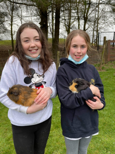 OS students and Guinea pigs 2